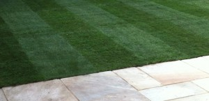Thomas Charles Landscapes Turfing